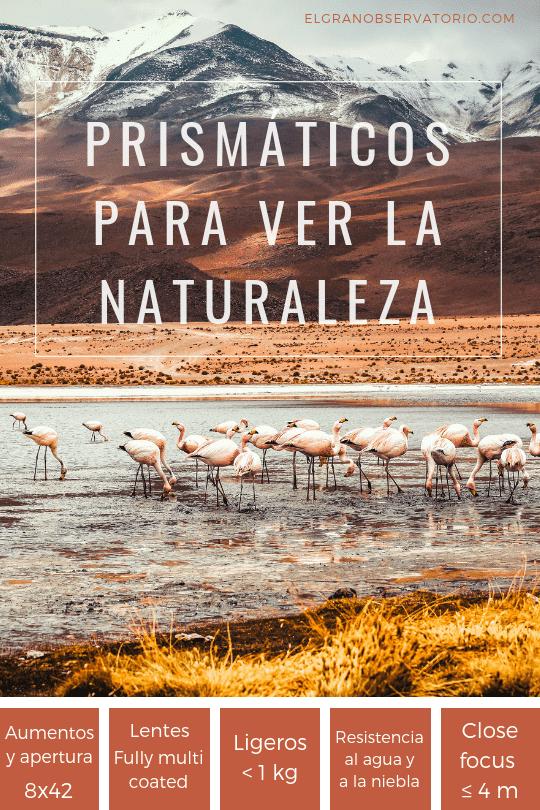 Los mejores prismáticos para ver aves y para observar la naturaleza son los de 8x42.