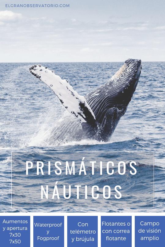 Los mejores prismáticos náuticos son muy resistentes al agua y a los empañamientos.