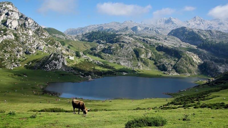 El Parque Nacional de los Picos de Europa es uno de los más famosos y más visitados de España.