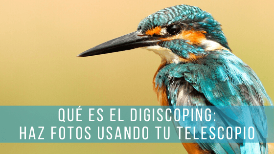 El digiscoping es una técnica de fotografía de naturaleza que utiliza un telescopio terrestre a modo de teleobjetivo.