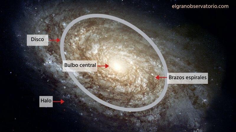 Las partes de una galaxia son: bulbo, disco, brazos espirales y halo.